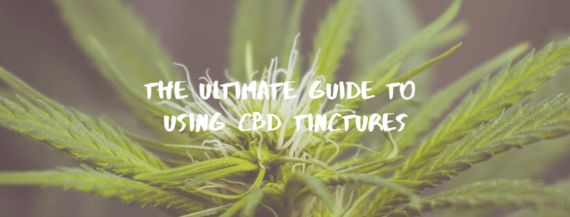 The Ultimate Guide to Using CBD Tinctures
