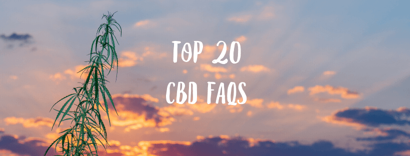 Top 20 CBD FAQs